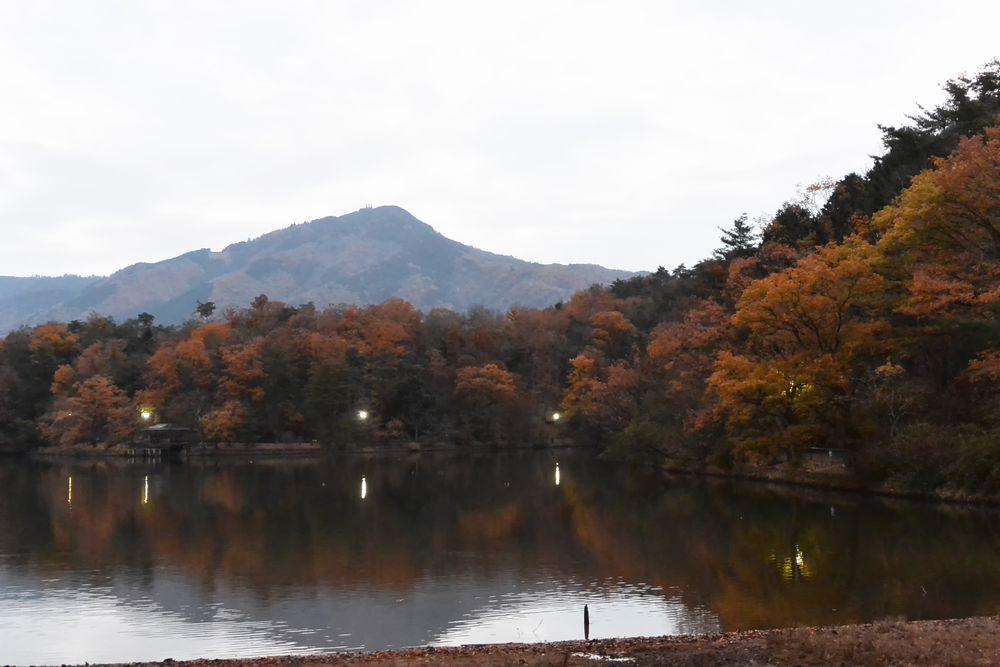 木々は赤から濃い茶色に(2015.12.10 06:48)