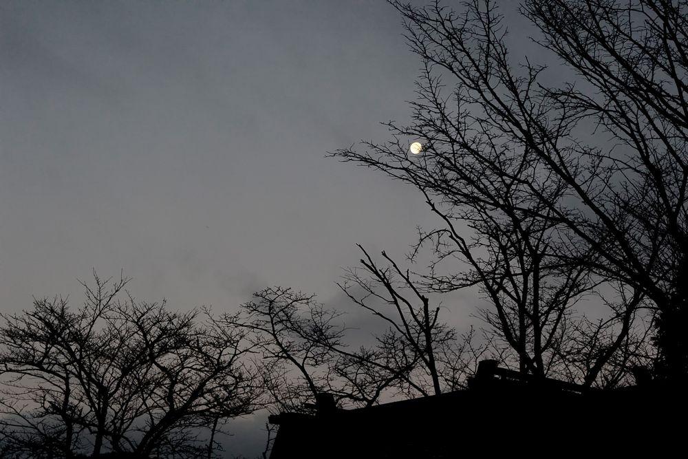 冬の月はひときわ美しい(2015.12.28 06:57)